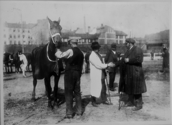 Closing the deal, Berlin horse market, ca. 1900